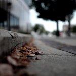 main_street__by_missjessicajoy-d45xsra